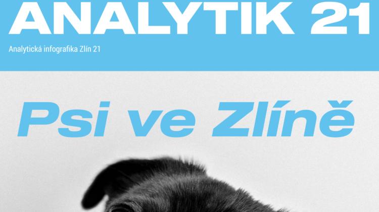 Srovnání pejskařské praxe ve městech ČR i v zahraničí