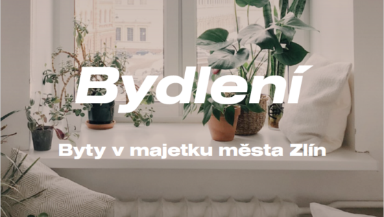 Analytik 21: Byty v majetku města Zlín